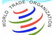 سازمان جهانی تجارت و حقوق بینالملل بشر