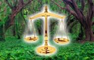 مطالعه تطبیقی گستره مفهوم ذینفع در اقامه دعاوی زیستمحیطی در حقوق ایران و اتحادیه اروپا