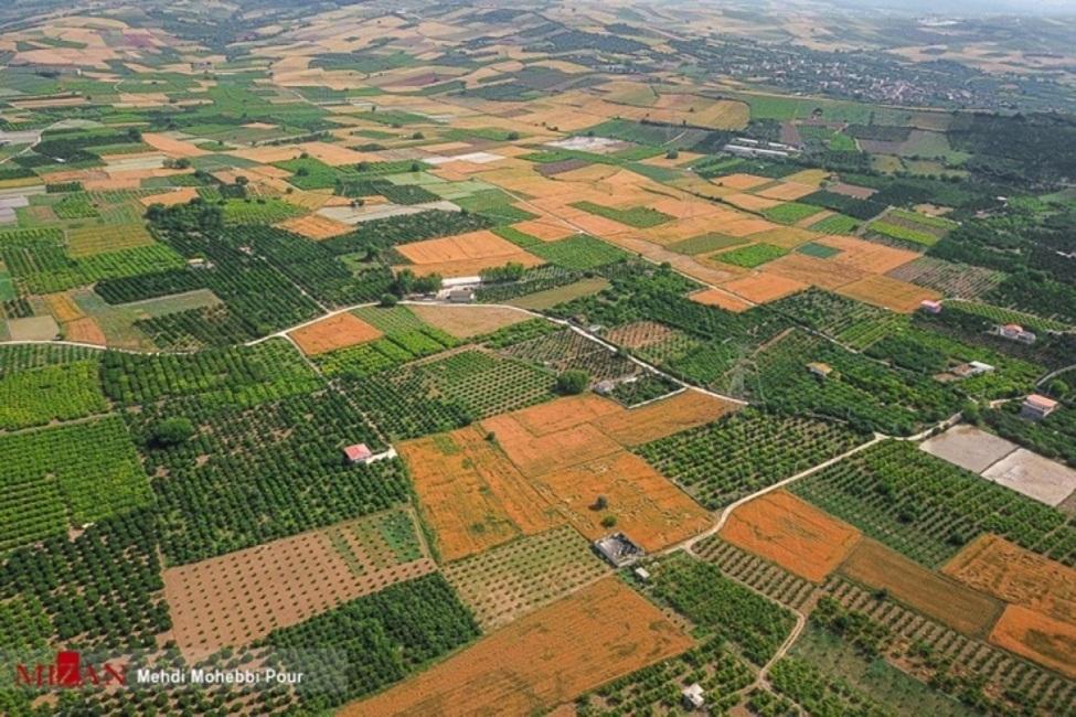 نگاهی به اقدامات دستگاه قضا برای بازگشت «نگین کشاورزی ایران» به بیتالمال