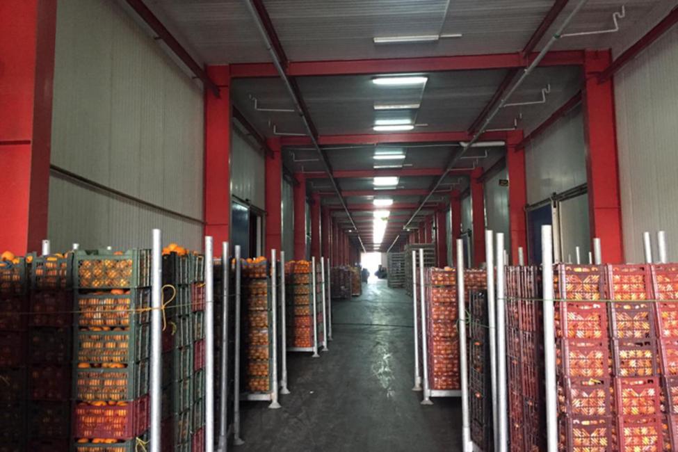 هشدار سازمان بازرسی کل کشور در ارتباط با کیفیت و قیمت میوه تنظیم بازار