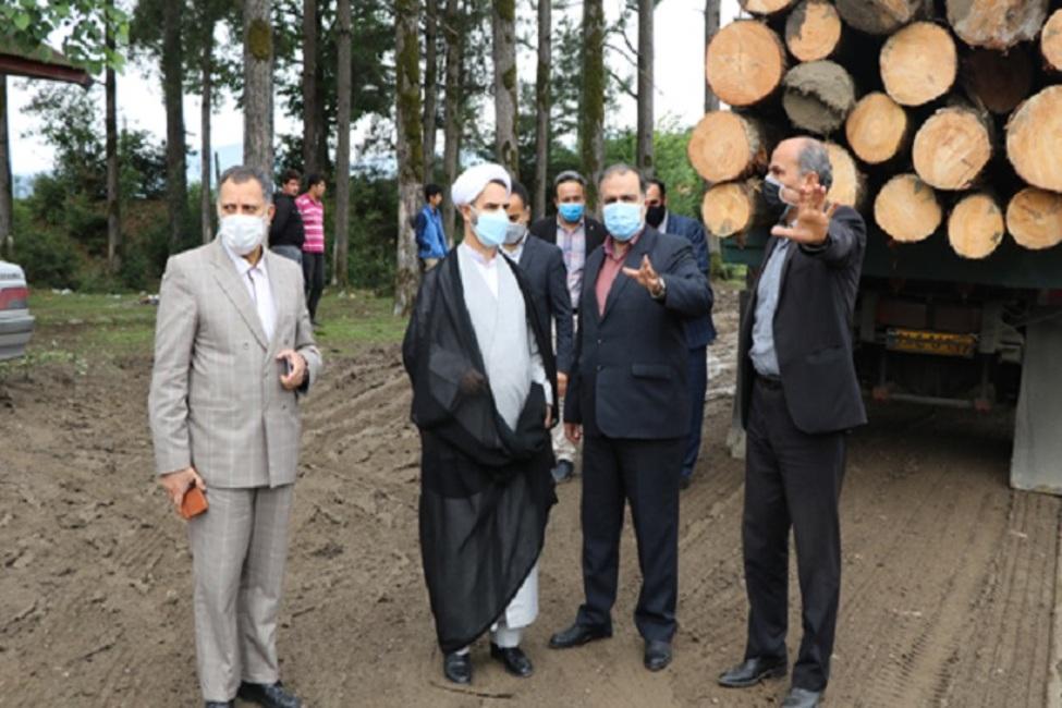 دستور رئیس کل دادگستری گیلان به منظور توقف برداشت چوب از مناطق جنگلی شفت/با عوامل تعرض به خبرنگاران قاطعانه برخورد میشود