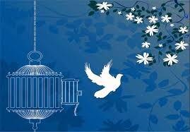 آزادی ۶۳ نفر از زندانیان استان فارس