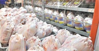 بازدید سرزده رئیس دادگستری گیلان از مراکز توزیع مرغ