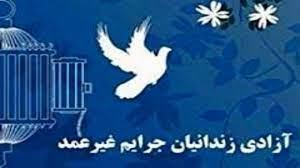 زندانی جرایم غیر عمد با رضایت شاکی به آغوش خانواده بازگشت